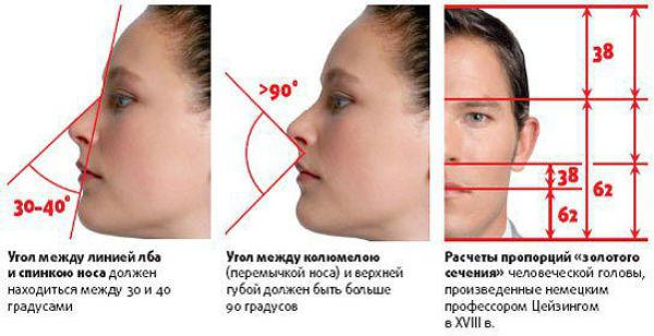 идеальный нос фото