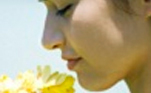 фото Септопластика - операция по исправлению перегородки носа