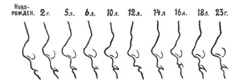 Нос с возрастом фото
