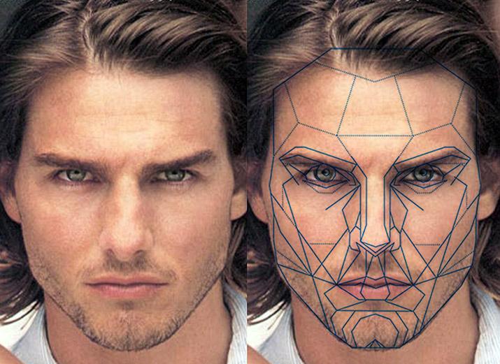 Пропорция лица красивого мужчины